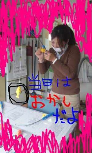 DSC_0969_convert_20121113161124.jpg